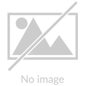 به بهانهی دهمین سالروز درگذشت «خسرو شکیبایی»